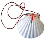 pilgrims-shell
