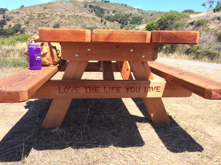 A Heavenly Day at Angel Island | The Camino Provides