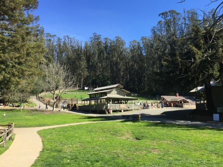 A great picnic area with a petting zoo