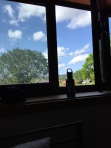 The view from my top bunk
