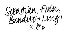 Sebastian, Finn, Bandito & Luigi