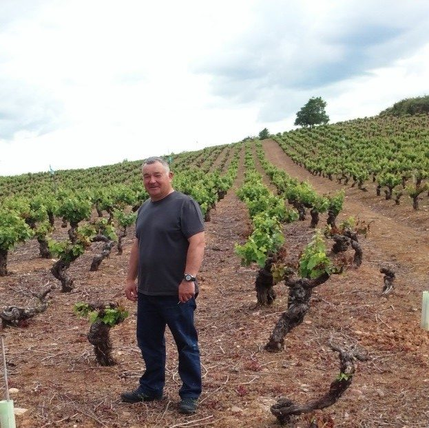 A farmer who tends his vineyard (There are so many vineyards in Galicia.)