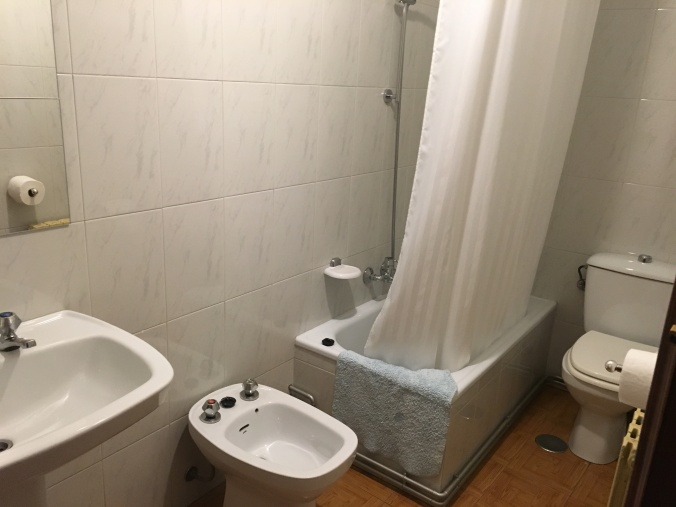 The bathroom in the hallway with shower, toilet, bidet and large sink.