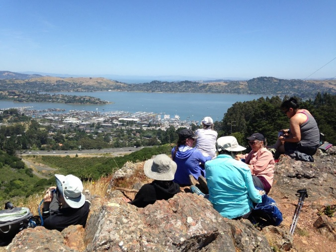 Looking across to Richardson's Bay and Tiburon (right) from above Marin City.