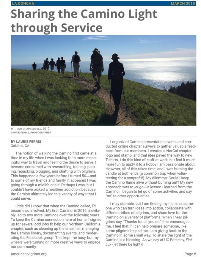 Sharing the Camino Light through Service