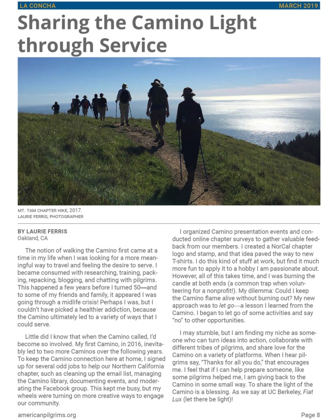 Sharing the Camino Light through Service