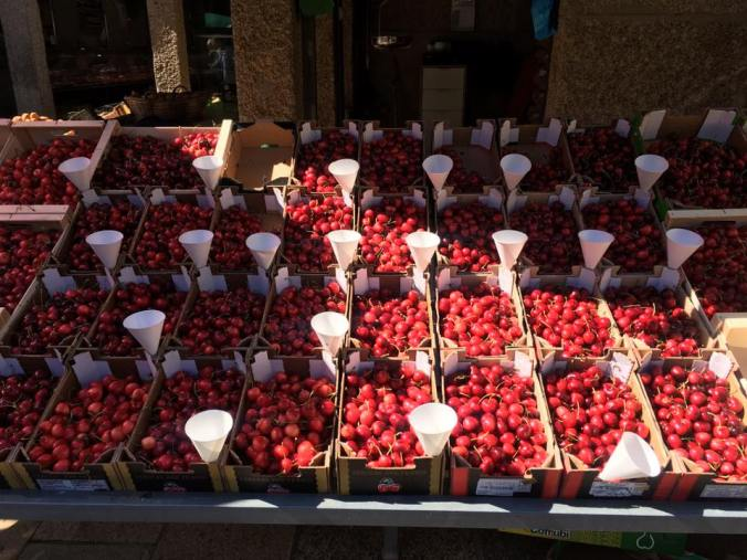 Cherries in the market stand